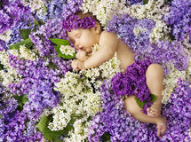 Baby in lilac flowers, newborn child greeting card, small new bo Royalty Free Stock Image