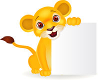 Baby lion with blank sign Royalty Free Stock Image