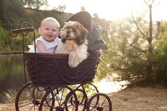 Baby and little puppy in a pram. Baby girl and puppy are sitting in a vintage pram royalty free stock photo