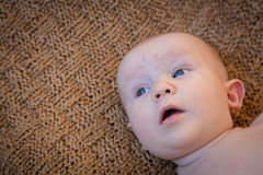 Baby Looking Around. Baby laying on their back looking up and to the side with a look of interest, surprise or wonder on their face royalty free stock image