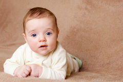 Baby looking at camera Stock Images
