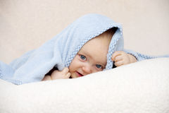 Baby looking at the camera on a peach background Stock Image