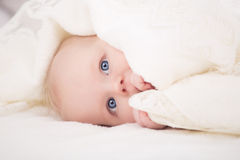 Baby looking at camera under a white blanket Stock Photography