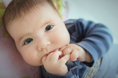 Baby looking curious. Close up of infant sucking finger Royalty Free Stock Images