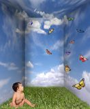 Baby Looking up at Butterflies. In a Cloud Grass Room royalty free stock photo