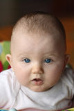 Baby looking up at camera Royalty Free Stock Image