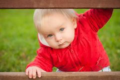 Baby looking between the wood fence Royalty Free Stock Image
