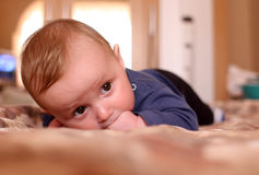 Baby Lying Royalty Free Stock Photos