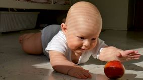 Baby is lying on the floor and holding a red apple. The child is very lively and cheerful, he actively knocks with hands