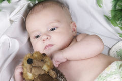 Baby lying with fury toy Stock Photography