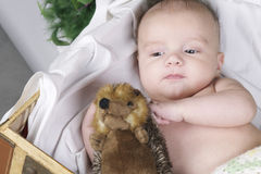 Baby lying with fury toy Stock Image