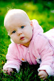 Baby lying on grass. And looking at camera Stock Image