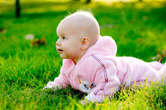 Baby lying on grass. And looking at camera stock images