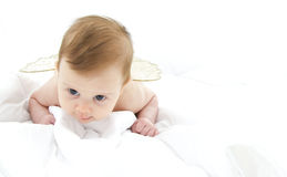 Baby lying on her belly Stock Photography