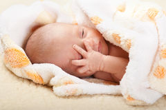Baby lying and holding his head. Royalty Free Stock Image