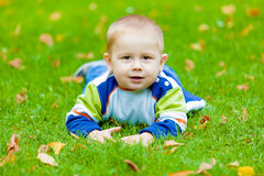 Baby is lying on the meadow Stock Photography