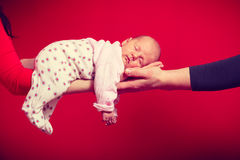 Baby lying on mother and father arms Royalty Free Stock Photo