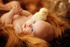 Baby lying in the nest Royalty Free Stock Images