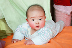 Baby lying prone Royalty Free Stock Photo