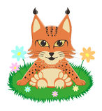 Baby lynx sitting on the grass surrounded by flowers. Vector illustration Vector Illustration