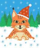 Baby lynx sitting in the snow in a Christmas hat on a background of forest Royalty Free Stock Photo