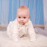 Baby 6 maanden op een blauwe achtergrond Stock Foto's