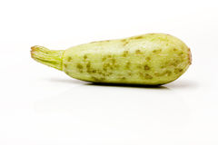 Baby Marrow. Baby white Marrow popular in Indian / Asian cooking isolated against white background Royalty Free Stock Image