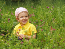 Baby on meadow Stock Images