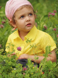 Baby on meadow. Little girl on meadow with flower Stock Images