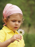 Baby on meadow. Little girl on meadow with flower Stock Photos