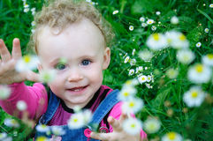 Baby on the meadow Royalty Free Stock Photography