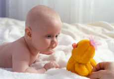 Baby meet with a toy. Baby meet with a chicken toy Stock Images