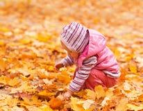 Baby met de herfstbladeren Stock Fotografie