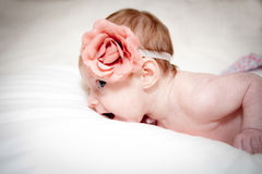 Baby met roze bloem Stock Afbeeldingen