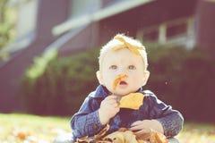 Baby mit Bogen im Kopf, der mit Blättern an einem Fall-Tag spielt Lizenzfreie Stockfotos