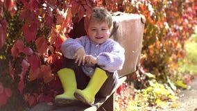 Baby mit gelbem Blatt Sonniges Wetter des warmen Herbstes Wenig netter Junge im Herbstpark Kinderwerfen gelb und rot stock video footage