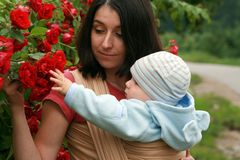 Baby with mom in sling royalty free stock images