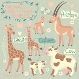 Baby and Mommy Animal Set Royalty Free Stock Image
