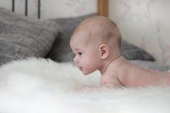 Baby 3 Monate, die auf einer flaumigen Bettdecke auf dem Bett, Babyjunge liegen Kopf eines kleinen Kindes, Blick zur Seite, Weich stockbild