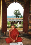 Baby monk Stock Image