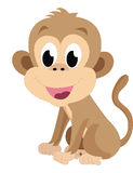 Baby monkey, illustration Stock Photography