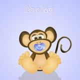Baby monkey Royalty Free Stock Images