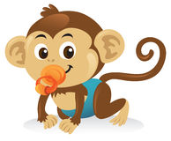 Baby Monkey With Pacifier Royalty Free Stock Image