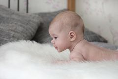 Baby 3 months lying on a fluffy bedspread on the bed, baby girl boy. Head of a small child, look to the side, soft focus. Baby 3 months lying on a fluffy stock image