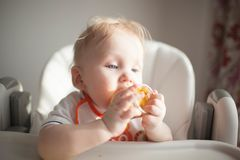 Baby 6 months old and he for the first time tries vegetable squash royalty free stock images
