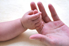 Baby and mother hands 2181. Hands touch between chinese mother and baby show family and love Stock Photo