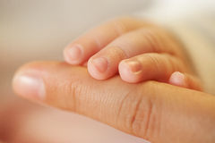 Baby and mother hands Royalty Free Stock Image