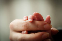 Baby and mother holding hands Stock Photography
