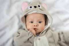 Baby  in mouse  costume Stock Image