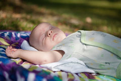 Baby Napping Outdoors Royalty Free Stock Image